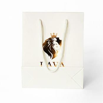 "210g C1S paper bag with foil imprint on all sides (10*13*5"")"