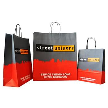 "235g Card Paper bag with full color imprint on all sides (5.25*13*3.25"")"